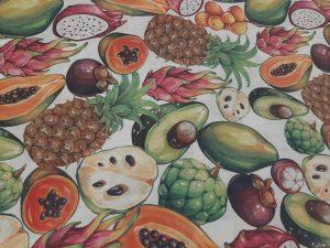 Tela Loneta Frutas Exóticas